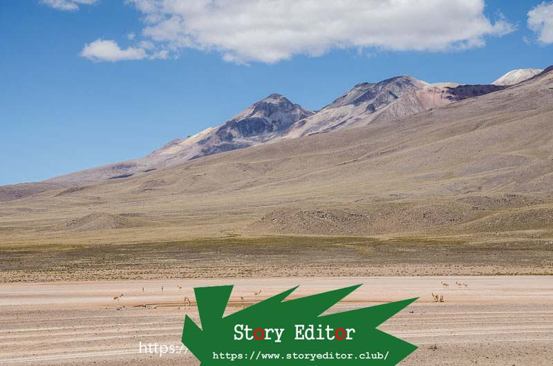 altiplano landscape with a group of vicuñas around a small lake and two volcanoes in the background one of the wonderful places in peru