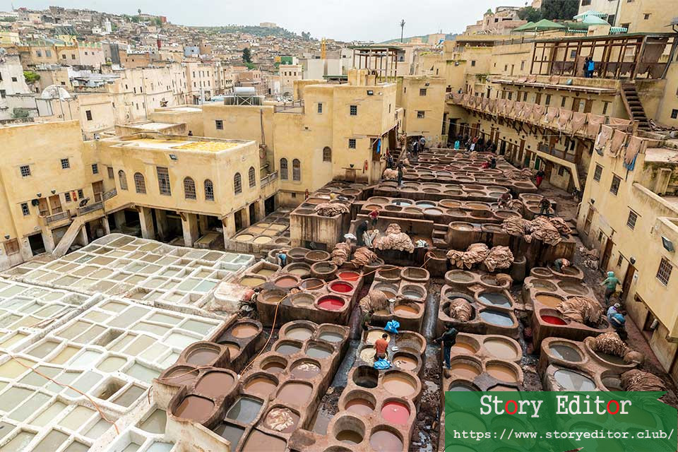 Tanners working in the medina of Fez (Morocco)