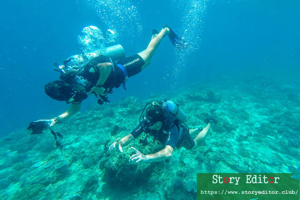 Bloggers diving in Gili Islands (Indonesia)